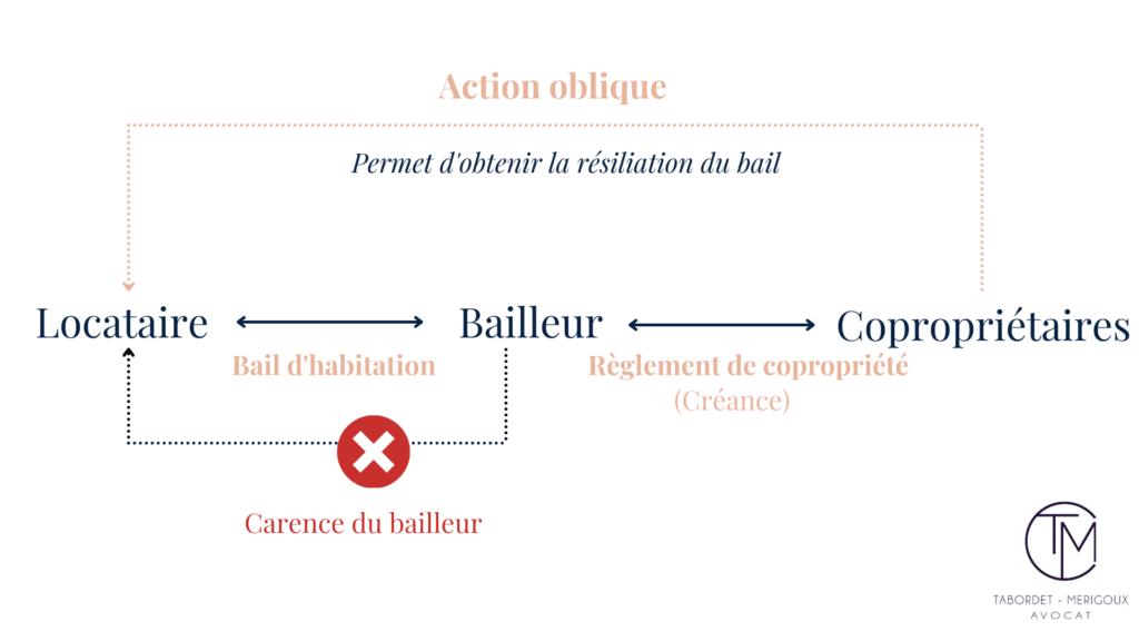 Bailleur - Résiliation d'un bail par l'exercice de l'action oblique en copropriété